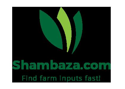 Shambaza
