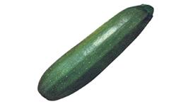 SQUASH - DARK GREEN ZUCCHINI