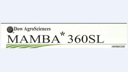 Mamba 360 SL