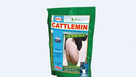 Animatic cattlemin( for more milk) mineral supplement