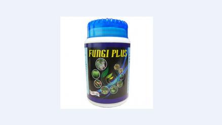 Fungi Plus Organic Fungicide