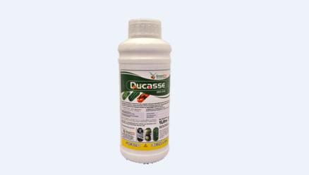 Ducasse 250EW Fungicide