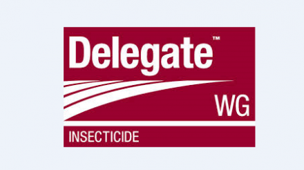 Delegate 240WG Insecticide