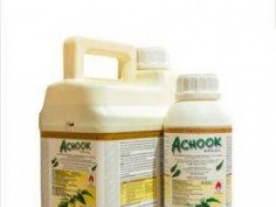 ACHOOK