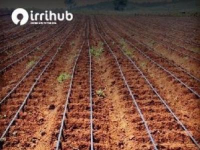 Irri Hub Drips Lines