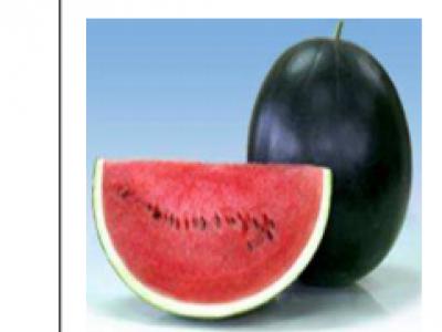 Water Melon - Andaman 636 F1