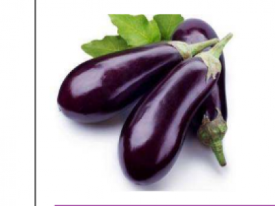 Eggplant- Long Purple