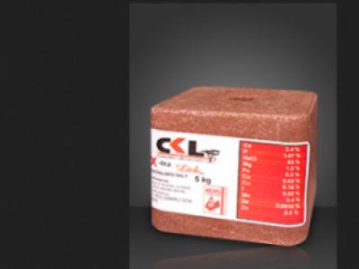 CKL X-tra Brick