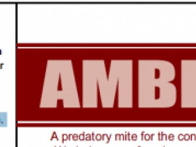 AMBLYTECH®