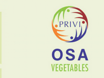 PRIVI OSA VEGETABLES.
