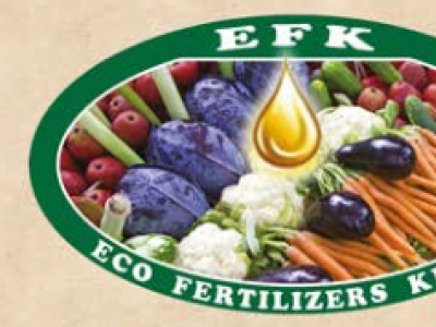 EcoGrow Plus Neem Organic Fertilizer & Soil Conditioner