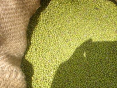 Green Grams - N26