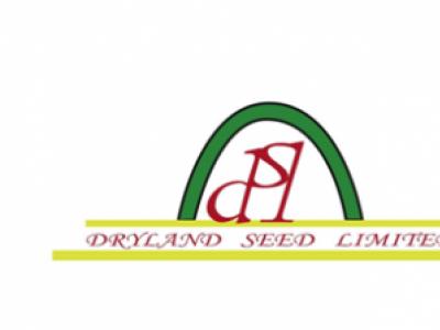 Maize - HYBRID KH500-21A