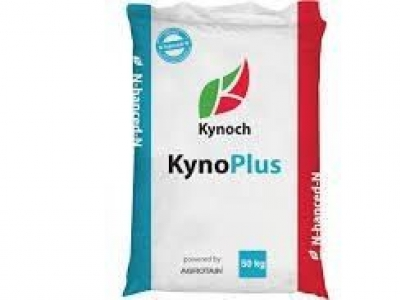KynoPlus Top