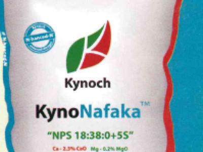 KynoNafaka
