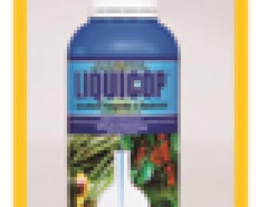 Liquicop Fungicide