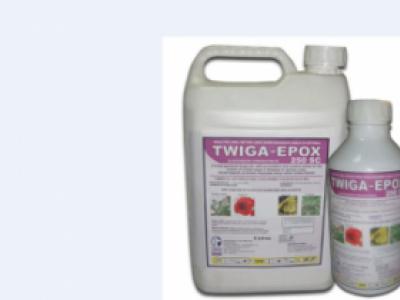 TWIGA EPOX 250SC