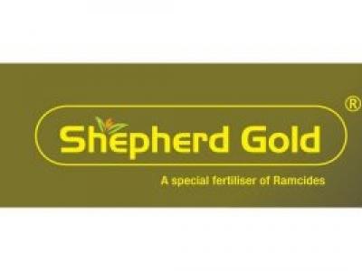 SHEPHARD GOLD