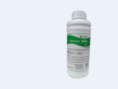 FERARI GOLD