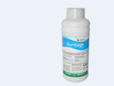 HERITAGE /LEGACY 5%EC