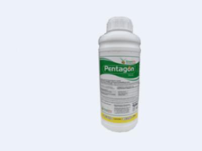 PENTAGON 5%EC