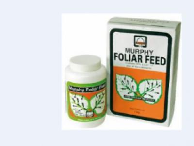 Murphy Foliar Feed