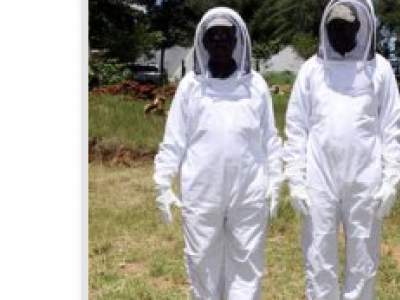 Beekeepers Protective Equipment
