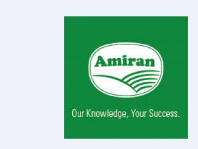 Amiran Foundation Kit