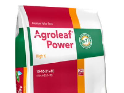 Agroleaf High K ( 15 10 31+ TE)