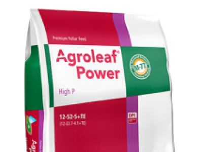 Agroleaf High P( 12 52 5 + TE)