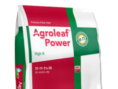 Agroleaf High N (31 11 11 plus TE)